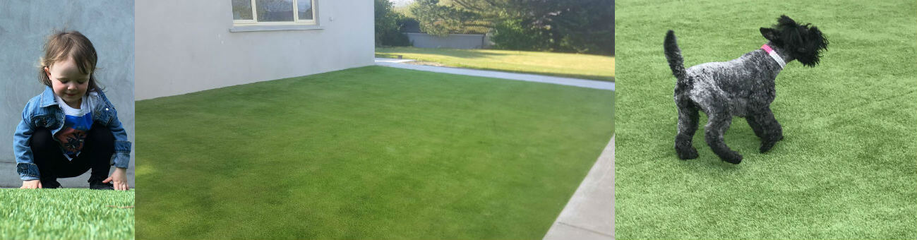 Artificial grass in Kieran Donaghy's house