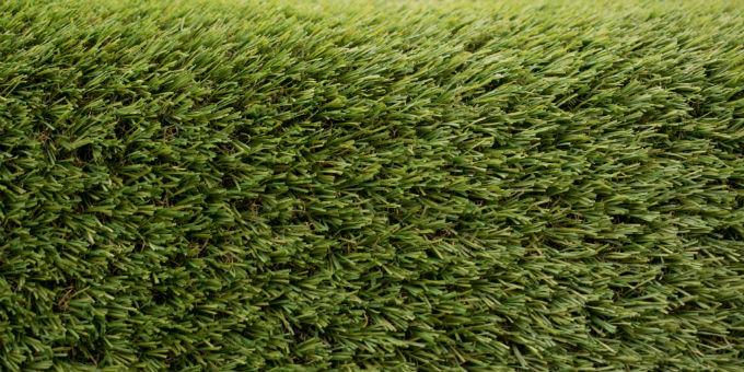tru grass