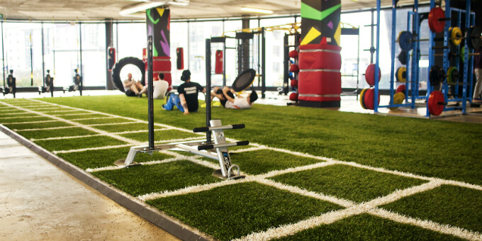 Synthetic Grass for Gyms