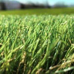 EVERgreen 35mm artificial grass product