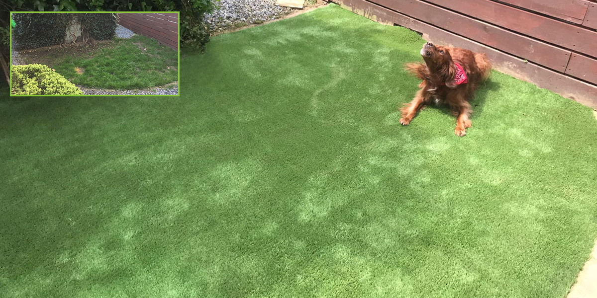 Artificial grass installation in Dublin 3