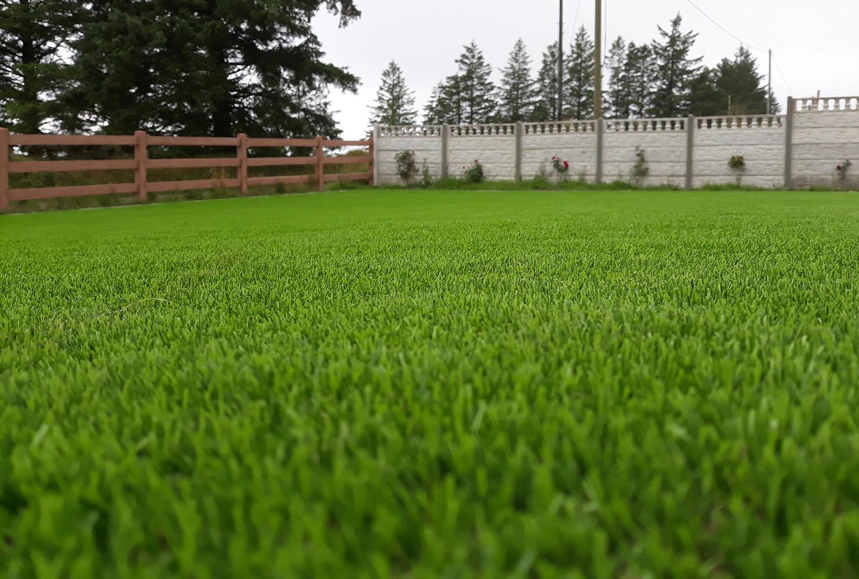 artificial grass for home gardens