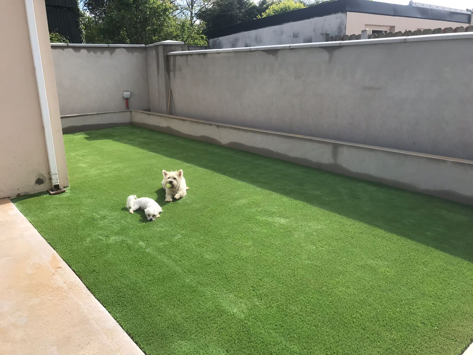 artificial grass lawn kerry